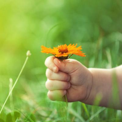 Aromatherapie/ -Pflege für Kinder
