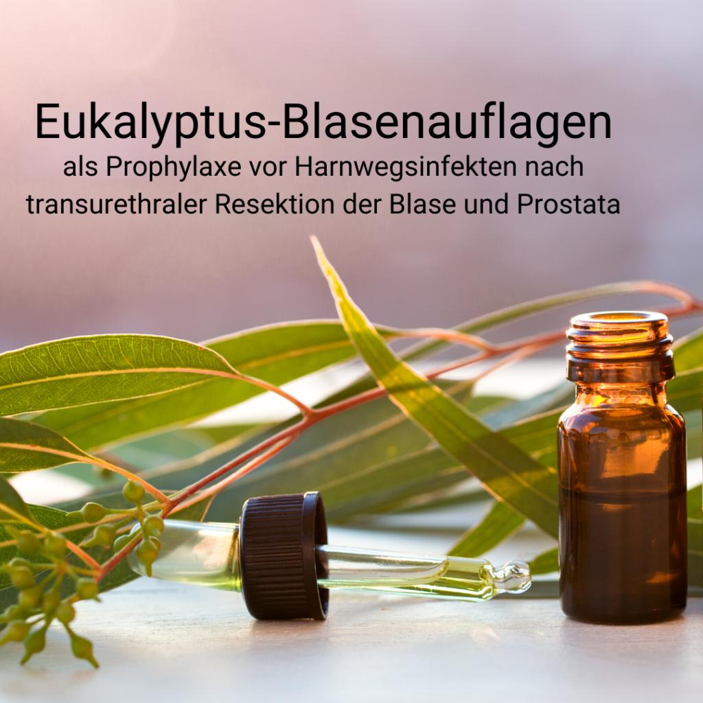 Eukalyptus-Blasenauflagen auf einer urologischen Station