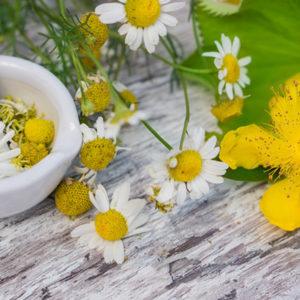 Ätherische Öle für die Pflege, Therapie und Hausapotheke