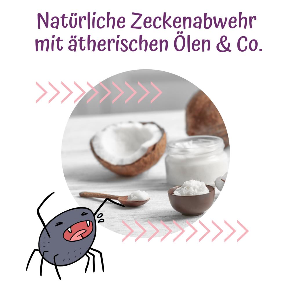 Natürliche Zeckenabwehr mit ätherischen Ölen & Co.