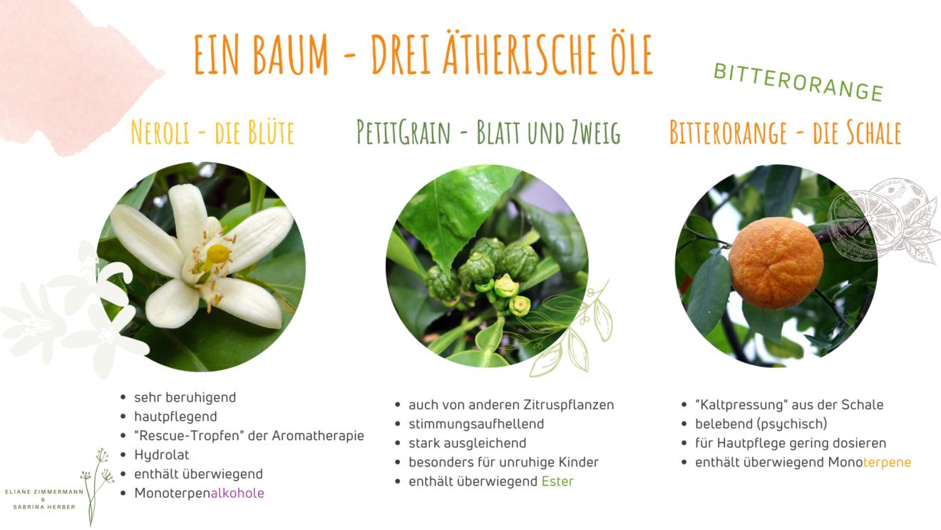 Basics Aromatherapie
