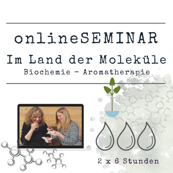 onlineSEMINAR Im Land der Moleküle