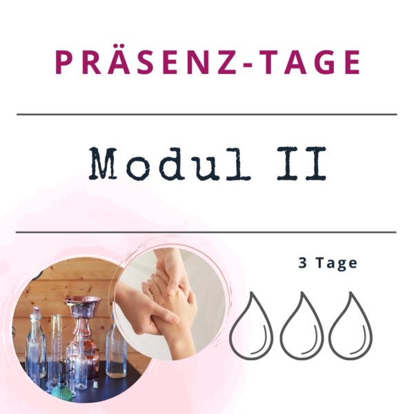 Präsenztage - Aromatherapie Modul 2 (Kopie)